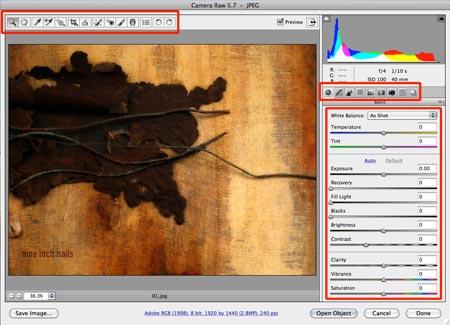 screenshot of Camera Raw interface